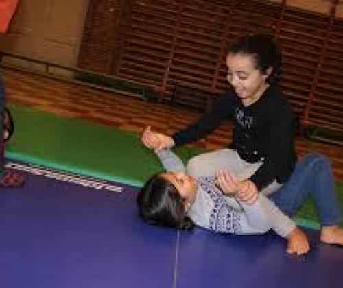 sChOOL Jitsu - innovatief project laagdrempelig sporten